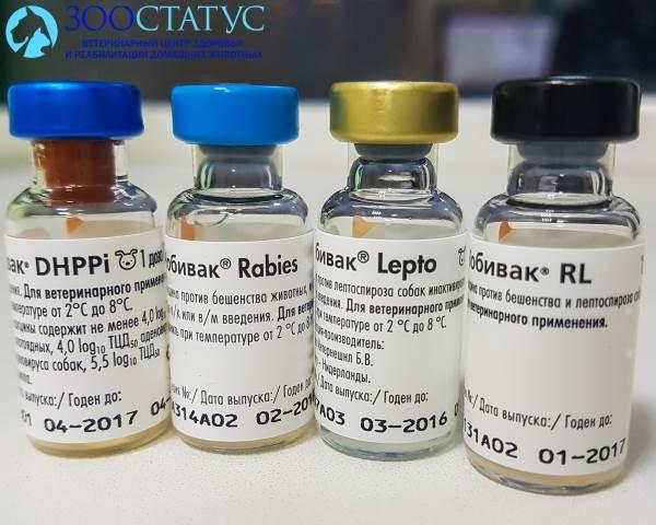лучшая вакцина от бешенства для собак